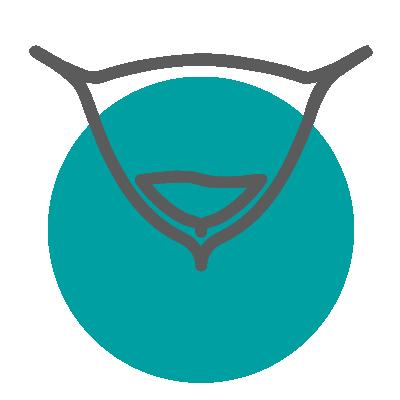 idrar kacirma ikon